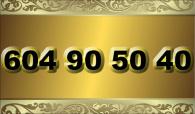 zlaté  číslo - 604 90 50 40  T-mobile