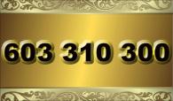zlaté  číslo - 603 310 300  T-mobile